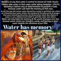 True Interesting Facts, Interesting Facts About World, Intresting Facts, Hinduism History, Ancient Indian History, Indian Culture And Tradition, Cool Science Facts, Hindu Rituals, Hindu Culture