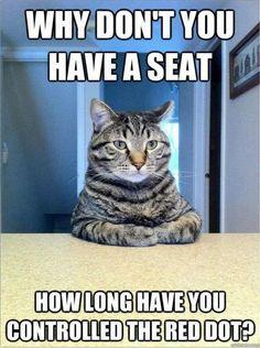Kitty Therapist