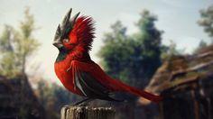 CD Projekt RED bird by vesner