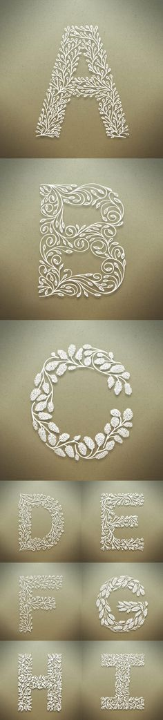 Botanical Alphabet by Seth Mach  #type #typeart