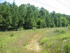 SOLD: 6.54 Acres of Land in Siler City NC - Chatham County  www.ericandrewsrealtor.com/1945138/