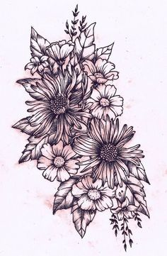 "http://chalang.wordpress .""les anemones""drawingchantal"