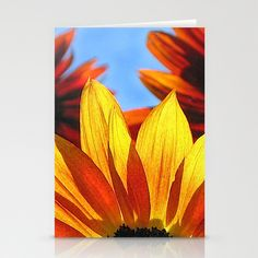 Sunflowers in Backlight Set of Stationery Cards by Bebop's Place