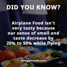 Airplane food isn't very tasty ? - - Airplane food isn't very tasty ? Knowledge n facts ✒ Oo I never knew Wierd Facts, Wow Facts, Real Facts, Wtf Fun Facts, Funny Facts, Crazy Facts, Strange Facts, True Facts, Weird