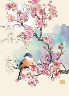 Bug Art B028 Cherry Blossom Bird greetings card