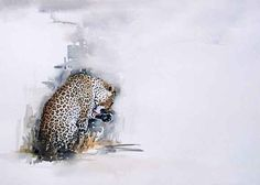 leopard watercolour painting by south african artist sue dickinson