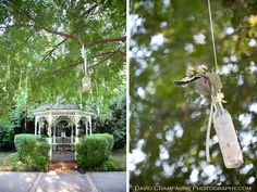Wedding Ceremony Decor Edwards Mansion Redlands Ca Shabby Chic Bird Cages Vintage