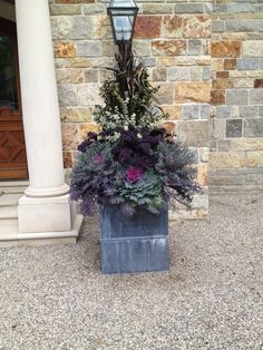 Fall Container Gardening with Ornamental Cabbage and Kale - Bing Images Fall Container Plants, Fall Containers, Container Gardening, Winter Planter, Fall Planters, Garden Planters, Ornamental Cabbage, Patio Plants, Potted Plants
