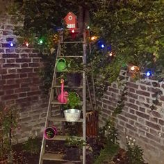 Garden decoration with flamingos and snales strawberryplants and little lights on an old ladder