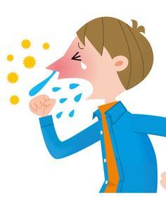 MEHR ALS ZWÖLF MILLIONEN DEUTSCHE LEIDEN UNTER EINER POLLENALLERGIE Habe ich eine Erkältung oder schon Heuschnupfen?