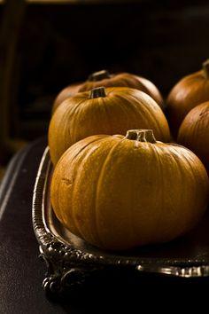 pumpkins | Princess Tofu