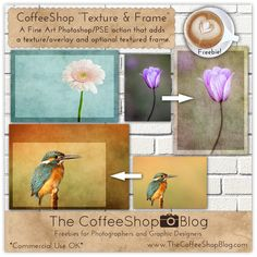 """CoffeeShop """"Texture and Frame"""" Fine Art Photoshop/PSE Action! Photoshop Elements, Photoshop Actions, Lightroom, Free Photoshop, Photoshop Tutorial, Photoshop For Photographers, Photoshop Photography, Goddess Of The Sea, Children Images"""