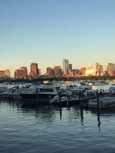Charles river Boston pops 2018 Boston Pops, Charles River, San Francisco Skyline, New York Skyline, Travel, Viajes, Destinations, Traveling, Trips