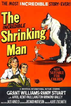 The Incredible Shrinking Man (1957) starring Grant Williams #scifi