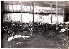 Titanic Victims Temporary Morgue
