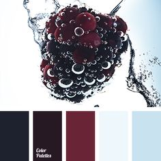 black, blackberry, Blue Color Palettes, color of blackberries, color solution…