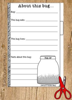 Do your kids love bugs? Want some easy activities for kids to practice writing and reading this summer- without even knowing it? Try this Free Bug Book! A perfect summer activity to learn all about the bugs in your backyard!
