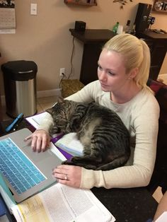 Super Whisper Collection: Doing homework with a cat can be a difficult task
