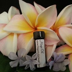 Sample Size Magic Oil Face Serum with by OrganicAlchemyMaui