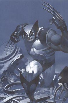 Wolverine strikes by ChristopherStevens.deviantart.com on @deviantART