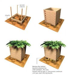 Alternative Gardning: How to build and use a potato box