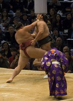 Japanese Martial Art Sumo