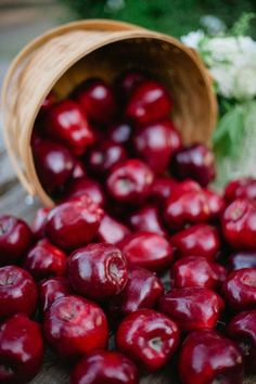 Falls bushel of Red Delicious Apples. Fruit And Veg, Fruits And Vegetables, Fresh Fruit, Apple Farm, Apple Orchard, Apple Harvest, Harvest Time, Apple Tree, Red Apple