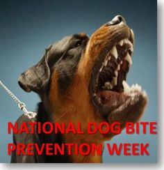May 20-26 Is National #Dog Bite Prevention Week    Cited in here are suggested tips for preventing dog bites (Based on AVMA):  http://blog.mesrianilaw.com/2012/05/14/may-20-26-is-national-dog-bite-prevention-week/    #PersonalInjury #Lawyer