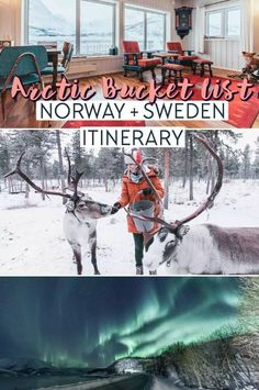Our Arctic Bucket List Itinerary for Norway + Sweden Weeks) - Heart My Backpack Sweden Travel, Norway Travel, Italy Travel, Norway Sweden Finland, Denmark, Snowmobile Tours, Visit Norway, See The Northern Lights, Fjord