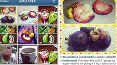 Abney Associates Blog Code 85258081704, Instagram gespamd door fruitig zwendel  http://abneyassociates-frejaphilipps00.tumblr.com/post/54954733101/abney-associates-blog-code-85258081704-instagram  Wie Instagram tijdens het weekend gebruikt kan zijn gebombardeerd met nog meer voedsel foto's dan gebruikelijk.