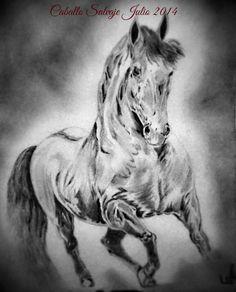 Dibujo a lápiz caballo salvaje.