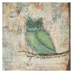 Somerset Fine Art Owl Always Love You Canvas Print - SB1586HN