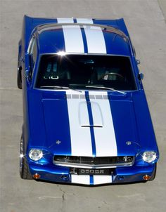 Photos Ford Mustang All Types Awesome – Sport Car News Blue Mustang, 1965 Mustang, Mustang Fastback, Mustang Cars, Chevy, Car Man Cave, Classic Mustang, Ford Mustang Shelby, Ford Motor Company