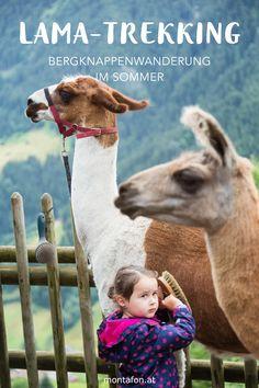 Gönn Dir eine Auszeit vom Alltag und wandere gemütlich mit den Lamas von Llamero Horst über einstige Bergknappenpfade durch die wildromantische Montafoner Szenerie. Ein Spaß für Groß und Klein! #lama #lamatrekking #wandern #sommer #berge #echterlebt #bergerlebnis #tierliebe #tiere #montafon #meinmontafon #visitvorarlberg #visitaustria Lamas, Horst, Austria Travel, Trekking, Animals, Event Calendar, Hiking Trails, Time Out, Families