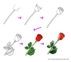 how to draw a flower tutorial easy