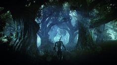 Image The Witcher 3 : Wild Hunt Xbox One - 51