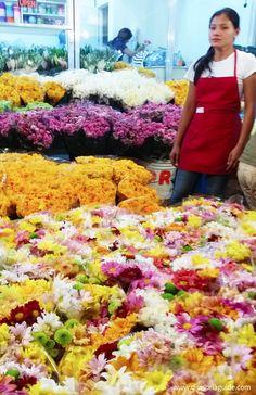 #Flowers #Dangwa #Manila #Phiippines www.divisoriaguide.com