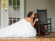 wedding photo's with dog.  OK, love this, but here's what I'd LOVE to do... Take a photo of the Husband to be kissing/ hugging the dog... then the dog Kissing/ licking the bride or visa versa.  Another cute way to include the dog... exchange notes before the actual wedding by attaching a not to the dogs collar... I think it would be very special and unique!