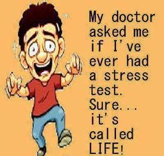 stress test funny quotes quote life lol funny quote funny quotes stress humor #Christmas #thanksgiving #Holiday #quote