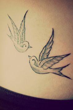 Swallows ❤