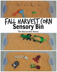 Fall Harvest Corn Sensory Bin We of the best things about fall is harvest and playing in the corn! This corn sensory bin is so easy to make and will provide hours of fun! Fall Sensory Bin, Sensory Table, Sensory Bins, Sensory Activities, Preschool Activities, Sensory Play, Harvest Corn, Fall Harvest, Harvest Time