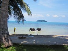 Koh Chang, Thailand - Translates as Elephant Island ... beautiful