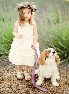 wedding at Sonoma Lavender Farm - photo by KT Merry-found on Dreamy Whites Flower Girls, Flower Girl Dresses, Flower Dog, Flower Crowns, Flower Basket, Dog Wedding, Dream Wedding, Rustic Wedding, Nontraditional Wedding