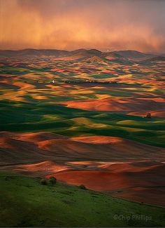 Palouse Hills, Washington