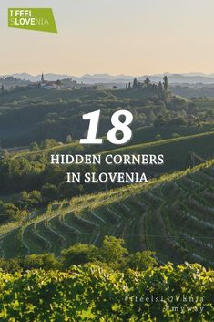 Unique Slovenia Road Trip that showcases the most beautiful places in Slovenia in two weeks. Visit Slovenia, Slovenia Travel, Slovenia Tourism, Travel Guides, Travel Tips, Slovenia Ljubljana, Bohinj, Julian Alps, Lake Bled