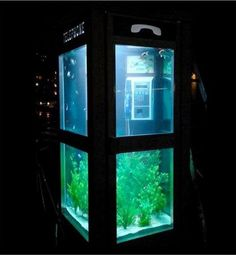 Public Phone Booths Attract Attention