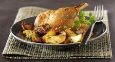 routedufoiegrasdugers-igp.org  Le confit de canard est une spécialité du sud-ouest de la France amené sur les tables des nobles à la cour d'Henri IV qui aimait beaucoup les produits du sud-ouest. Il se prépare avec les mêmes oiseaux (canard ou oie) que l'on élève pour préparer le foie gras ou le magret. La viande, une fois cuite, est conservée grâce à un ajout de sel, et recouverte de graisse qui empêche le passage de l'air.