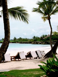 Punta Cana, Dominican Republic: zip-lining, dancing -- a for an adventurous couple Top 10 Honeymoon Destinations, Destination Wedding, Wedding Planning, Zip Lining, Walking Down The Aisle, Punta Cana, Dominican Republic, Wedding Locations, Big Day
