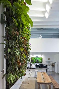 A wall of herbs, I can't think of any better art.