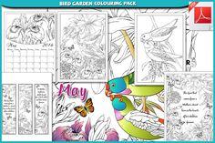 Bird Garden Colouring Pack Generic Download Picr
